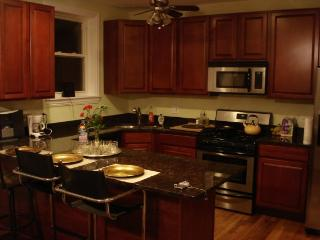 Modern and Homey Duplex (3Br-3Ba) - Chicago vacation rentals
