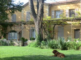 villa des figuiers - Remoulins vacation rentals