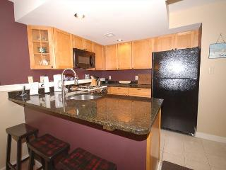 Winterplace 2 Bedroom Ski In/Out - Ludlow vacation rentals