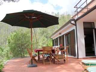 Mountain House Gerês 4suites,barbecue&big terrace - Arcos de Valdevez vacation rentals