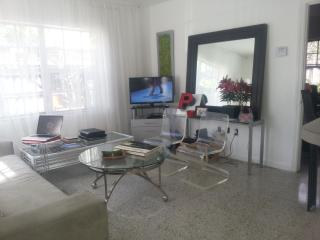 Downtown Fort Lauderdale: 1-bed/1-bath apt - Fort Lauderdale vacation rentals