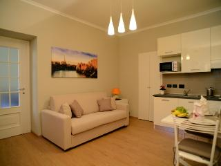 Turin White Classic Apartment - near Mole Antonell - Turin vacation rentals