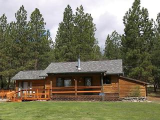 Bear Paw Cabin - Hamilton vacation rentals