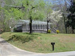 Lake Lanier Lake House Minutes to Delongha - Atlanta vacation rentals