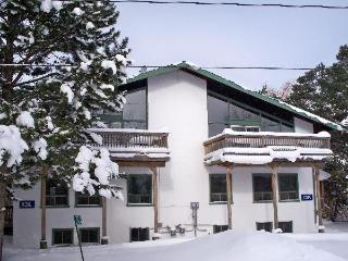 8 Bedroom Swiss Chalet with Sauna 13L#197 - Ontario vacation rentals