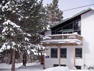 8 Bedroom Swiss Chalet with Sauna 13R#199 - Ontario vacation rentals