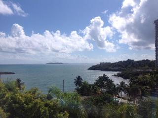 Jaw Dropping. Oceanview. 3Bds/3Bths.  Largest Apt. - Ceiba vacation rentals