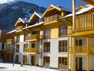Luxury Ski Penthouse in Rauris - Rauris vacation rentals