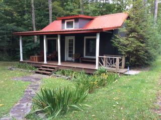 Charming Streamside Cabin...min To Belleayre Ski - Grand Gorge vacation rentals