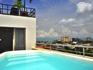 Villa Europa - Private Home - Downtown and Beach - Mexican Riviera-Pacific Coast vacation rentals