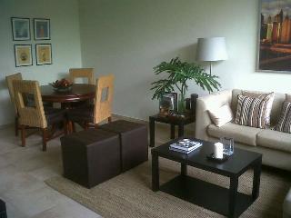 Great Apartment, Great Location - Santo Domingo vacation rentals
