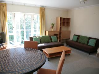 Large City of London 2 BR 2 BA Balcony Apartment - London vacation rentals