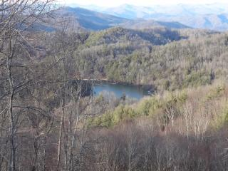 Blue Ridge Aerie Retreat - Cullowhee vacation rentals