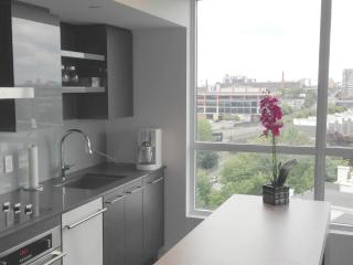 Downtown luxury furnished 2 Bdr condo and parking - Toronto vacation rentals