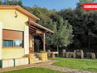 Il Boschetto - Bardolino vacation rentals