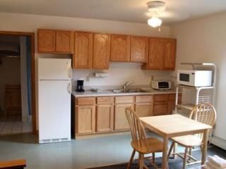 Lodge Room E - Almont vacation rentals