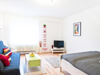 Comfortable and Central Apartment in Berlin - Berlin vacation rentals