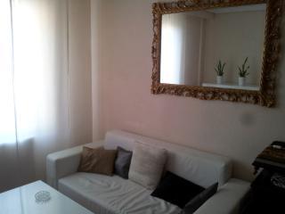 Apartment in historic center - Castilla Leon vacation rentals