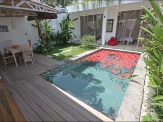 Bali Seminyak 800 m from the beach, new villa, very quite - Seminyak vacation rentals