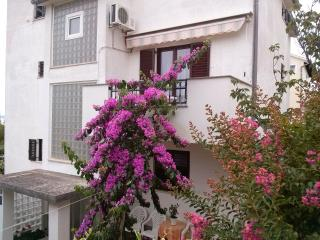 Zadar - Apartments Buljan - Nada1 - Zaton vacation rentals