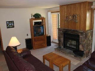 BV201AA Great Condo w/ Elevator, Wifi, Fireplace, Clubhouse - Silverthorne vacation rentals