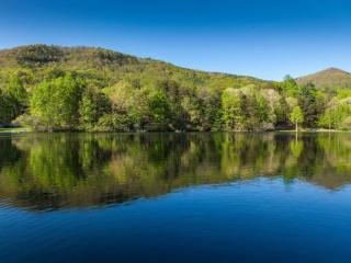 Lakeside Serenity - Ellijay GA - Ellijay vacation rentals