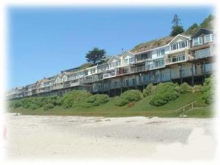 404/Clam Hut *OCEAN FRONT* - La Selva Beach vacation rentals