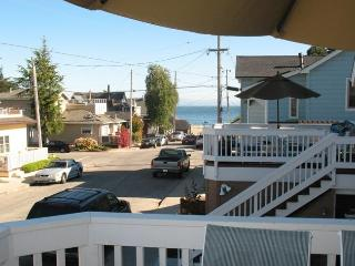 209/As Good as it Gets **WALK TO BEACH** - Watsonville vacation rentals