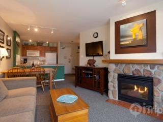 Lovely 1 Bedroom,1 Bath condo at Eagle Lodge- Mountain View unit 322 - British Columbia Mountains vacation rentals