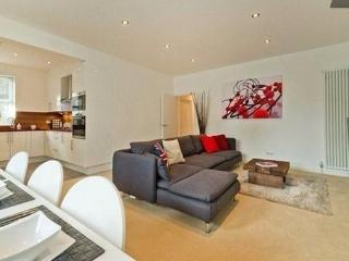 Luxurious New Apartment-minutes To  London - London vacation rentals