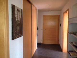 Alpen Chalet - Soll vacation rentals