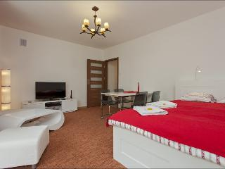Next to National Theatre NIECALA - Warsaw vacation rentals