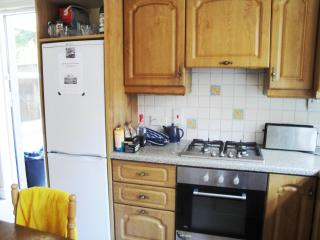 Beautiful house with WiFi in North Dublin centre - County Dublin vacation rentals