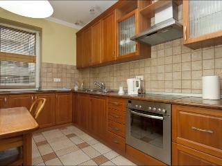 Spacius apartment in the city center TAMKA - Central Poland vacation rentals