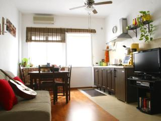 Beautiful Modern Flat Minutes To Central Rome - Pomezia vacation rentals