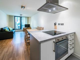 New Building, Great Transportation, Sleeps 6! - London vacation rentals