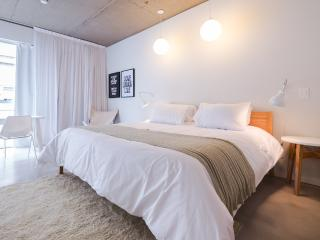 Spacious Brand New Studio in San Telmo (ID#1929) - Capital Federal District vacation rentals