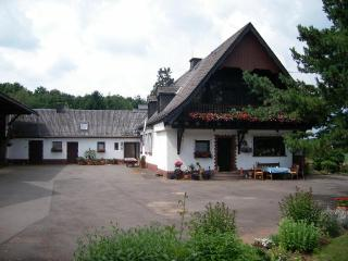Vacation Apartment in Prüm - 1012 sqft, petting animals (horses), high-quality furnishings (# 57) - Gondelsheim vacation rentals