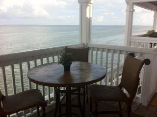 St. Petersburg, FL -Beautiful Setting on Tampa Bay - Saint Petersburg vacation rentals