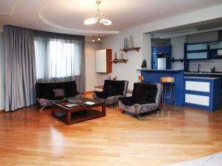Luxury 2 Bedroom Apartment - Tbilisi vacation rentals