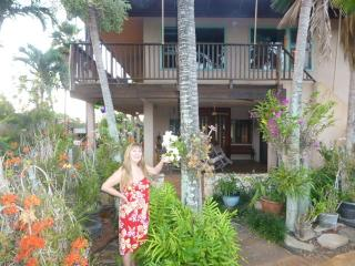 Haleiwa Secret Garden Paradise - Haleiwa vacation rentals