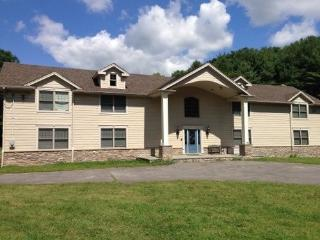 Catskill Vacation Retreat on 40 Acres - East Durham vacation rentals