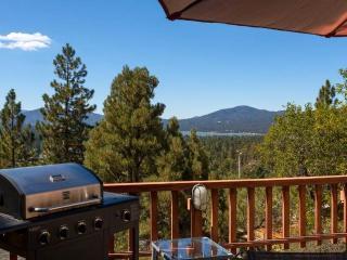 Out of Dodge Lodge - Big Bear Lake vacation rentals