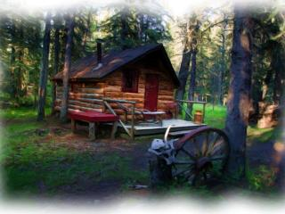 CABIN IN THE WOODS - Millarville vacation rentals