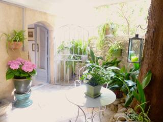Delightful Spacious Studio With Covered Terrace - Cagnes-sur-Mer vacation rentals