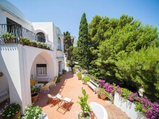 Capri Island - Exclusive Villa - max 14 Pax - Capri vacation rentals