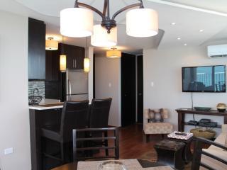 Contemporary Condado 1 Br  Beach & Oceanfront View - San Juan vacation rentals
