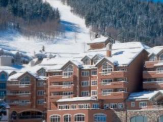 St James Place; Village Ice Rink View; sleeps 10 - Beaver Creek vacation rentals