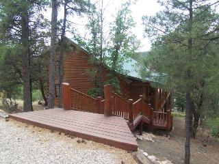 The Grizz Cabin - 3 Bed 4 Bath Log Cabin for 13 - Alto vacation rentals