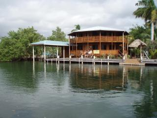 Cap's Inn 80 ft waterfront. Private home. - Toledo vacation rentals